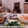 Леонид Мантык
